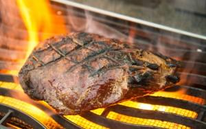 grilling_presa[1]